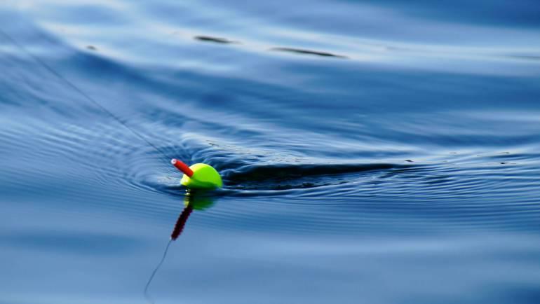 Beginnen met vissen: alle tips en info