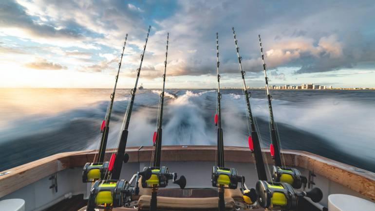 Vispas Nederland: waar en wanneer aankopen?