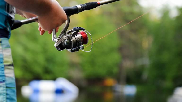 Viswetgeving Vlaanderen