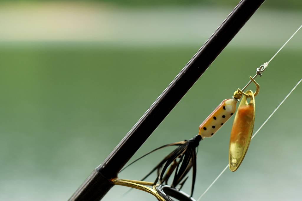 vissen met shads
