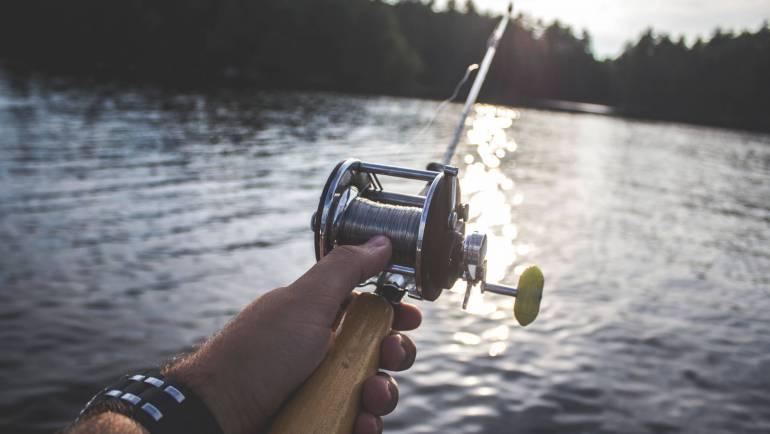 Vissen bijten slecht: 8 redenen