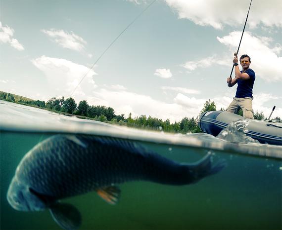 Vistips voor beginners