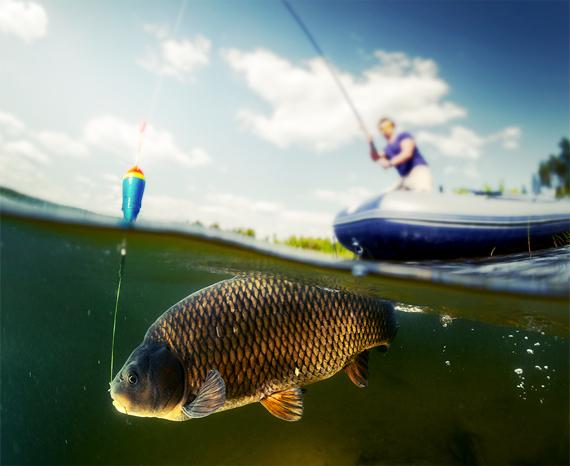 Hoe een vis onthaken?